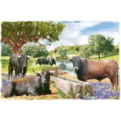 Baldosa decorativa. toros. hecho a mano. comprar. madrid