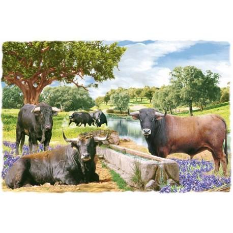 Dekorative Fliesen Bullen Mit Rahmen Enthalten Handgemacht - Fliesen kaufen in berlin